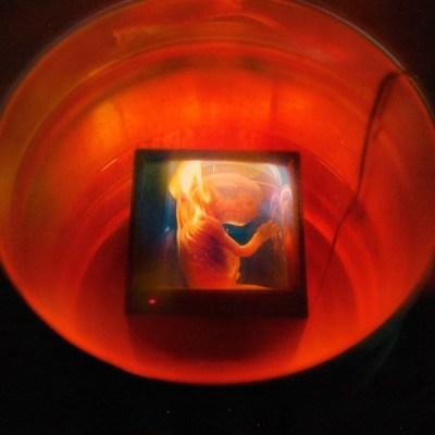 GoldLink HARAM Album Download