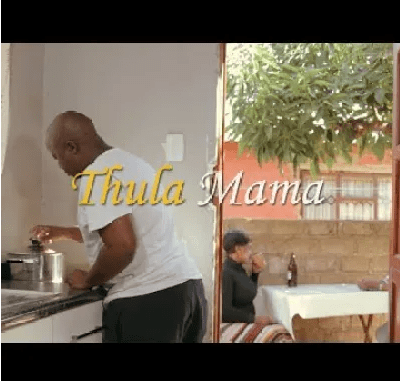 PureVibe Thula Mama Mp4 Video Download