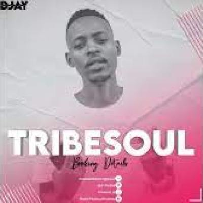 TribeSoul Resonate MP3 Download
