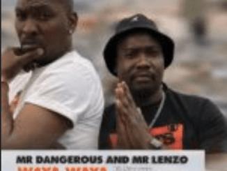 Mr Dangerous Waya Waya MP3 Download