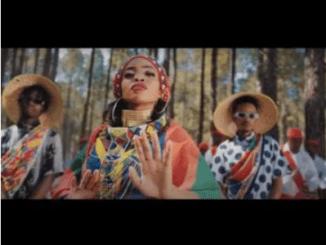 Zanda Zakuza Afrika Mp4 Video Download
