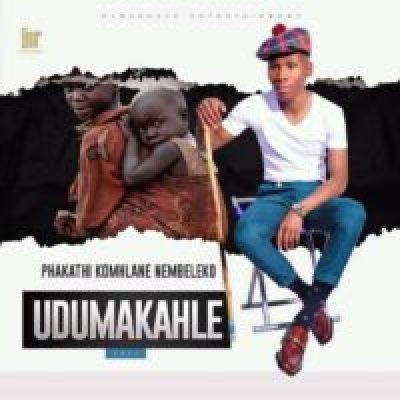 Dumakahle Asifani Siyafanelana MP3 Download