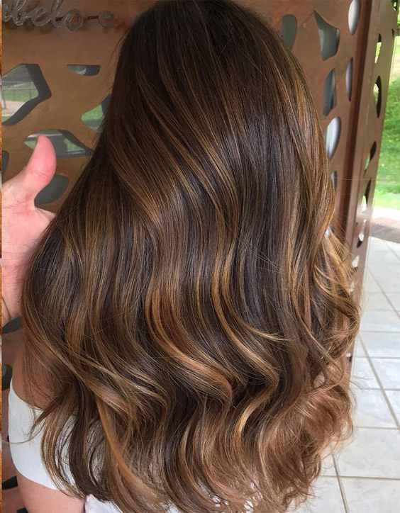 Fresh Brown Highlights & Hair Color for Girls