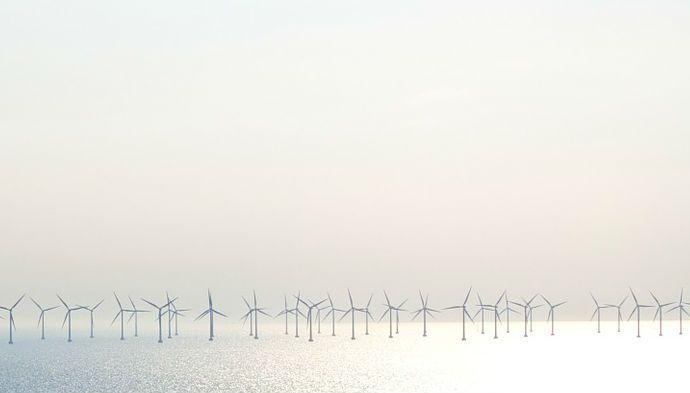 Grøn bæredygtighed skal tænkes ind i virksomheden fra starten