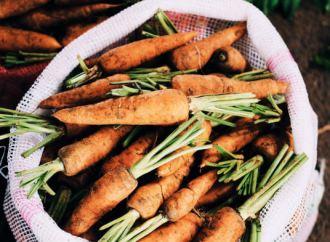 Ny aftale sætter skub i fødevarenetværks udbredelse af lokale fødevarer