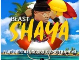 Beast – Shaya Ft. Mondli Ngcobo & SpiritBanger
