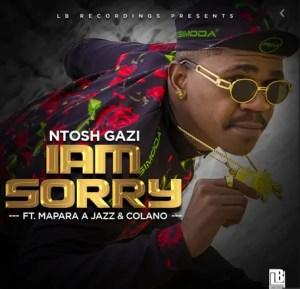 Ntosh Gazi – I'm Sorry Ft. Mapara A Jazz & Colano