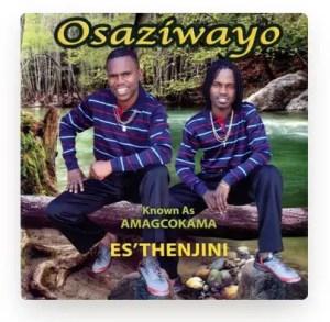 Osaziwayo - Es'Thenjini Mp3 Download