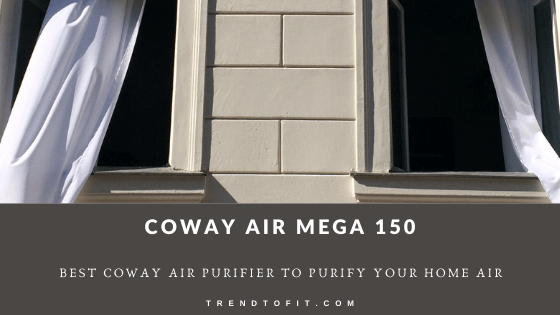 Coway Professional Air Purifier review