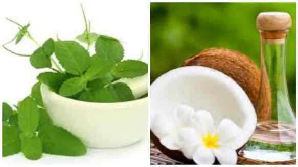 Tulsi oil for hair growth