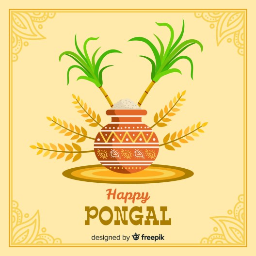 Happy Pongal Festival in Tamil, happy pongal images, happy pongal in tamil, happy pongal wishes, how to make pongal, how to prepare pongal, pongal 2020, pongal 2021, pongal festival, pongal kolam, pongal quotes in tamil, pongal rangoli kolam, pongal wishes images, pongal wishes in english, pongal wishes in tamil, rangoli designs for pongal, when is pongal