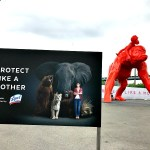 Protect Like a Mother Exhibit