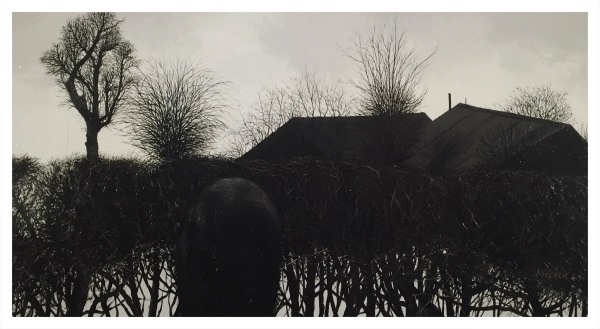 Rooftops, Hedge & Figure, Jack Simcock