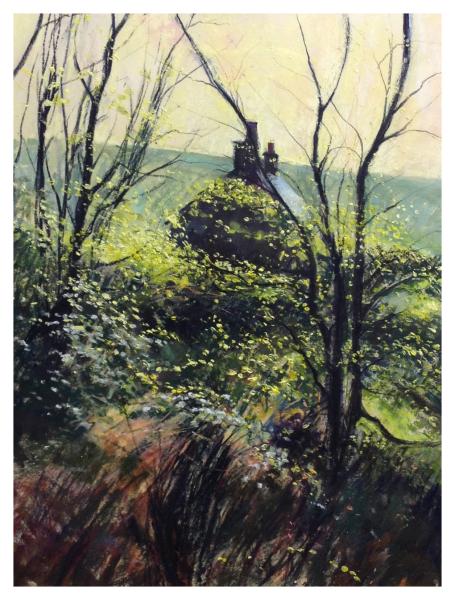 Hunt, David ( ) Rocks Barr's Garden - Trent Art