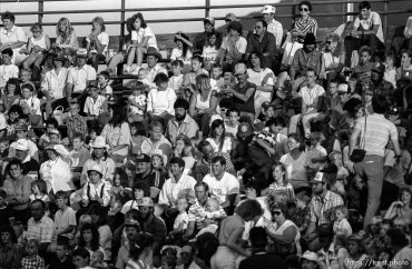 Crowd in stands at rodeo.