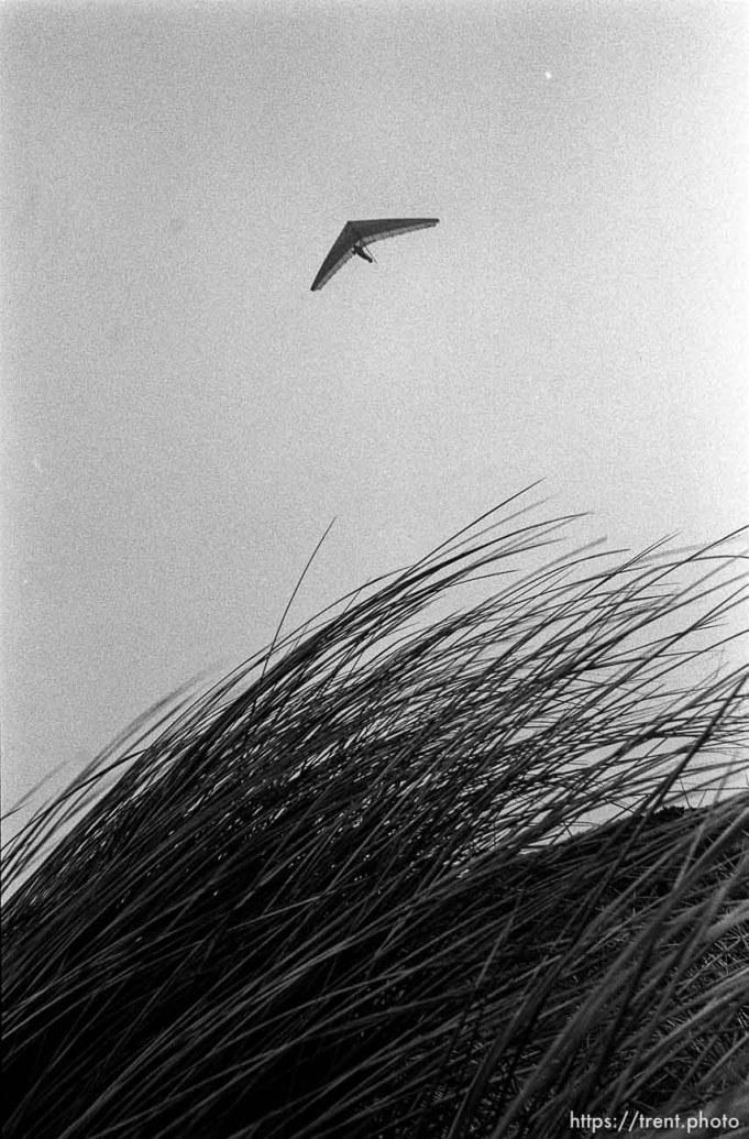 hang glider above Fort Funston