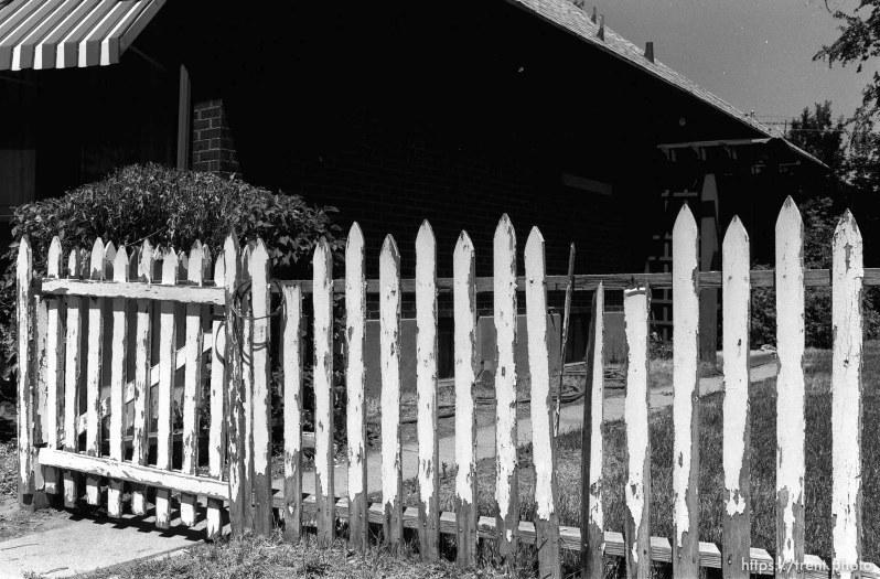 White picket fence at Nana's house.
