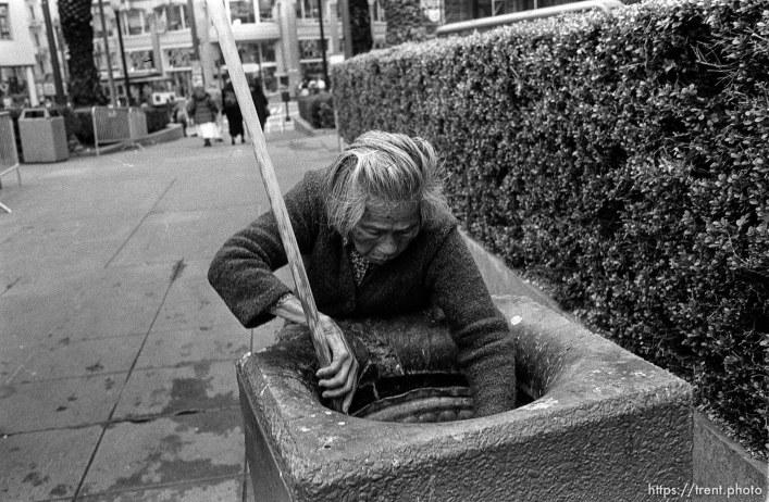 Woman picks through trash can