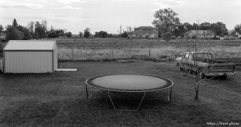 backyard with trampoline