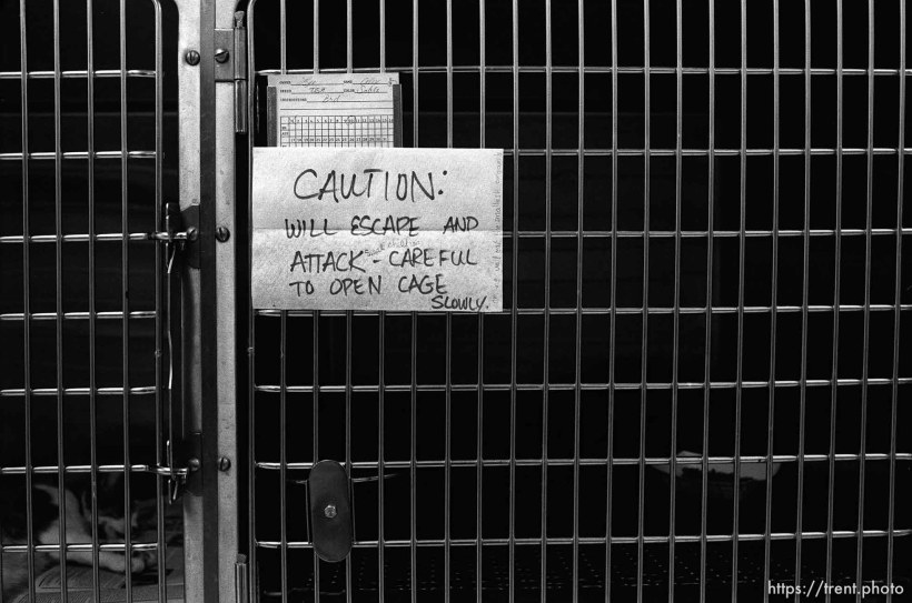 "Note on cage: ""Caution: will escape and attack- careful to open cage slowly"" at the Lafayette Animal Hospital"