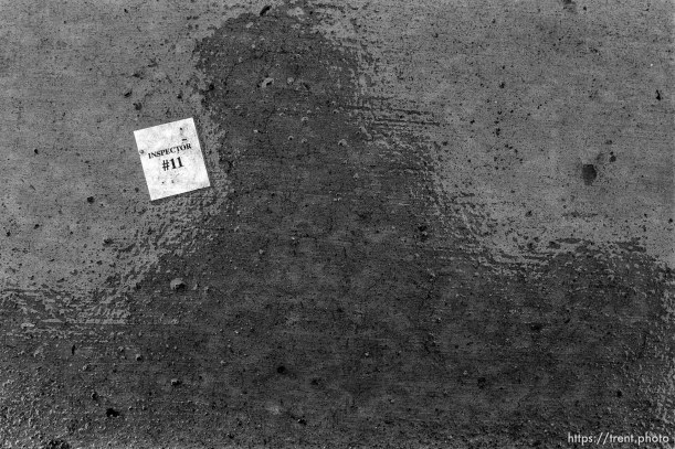 """inspector #11"" tag on wet ground"