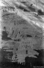 "Graffiti ""please screw me!"". San Ramon project"