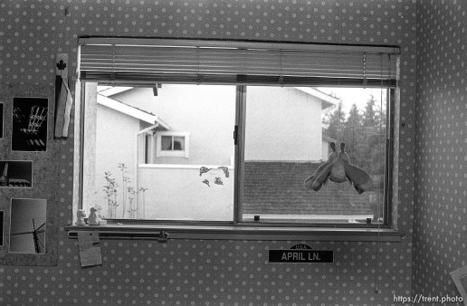 Window in April Nelson's room.