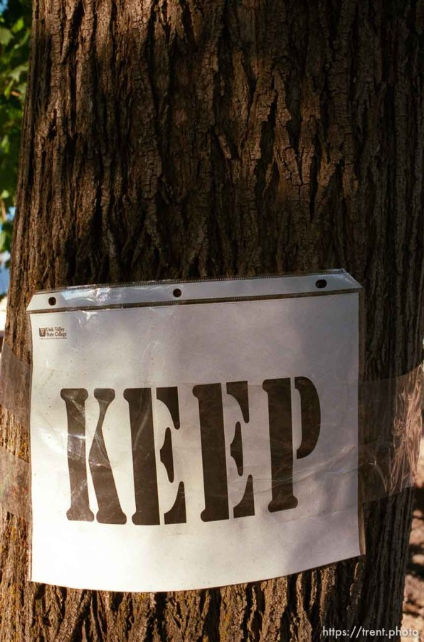 """Trees labelled """"keep"""" and """"remove"""" at a construction site at Utah Valley State College."""