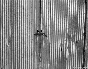 Metal shed and padlock