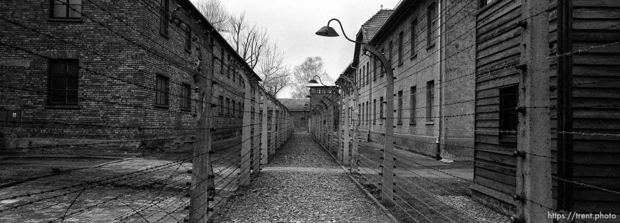Fencing at the Auschwitz Concentration Camp.