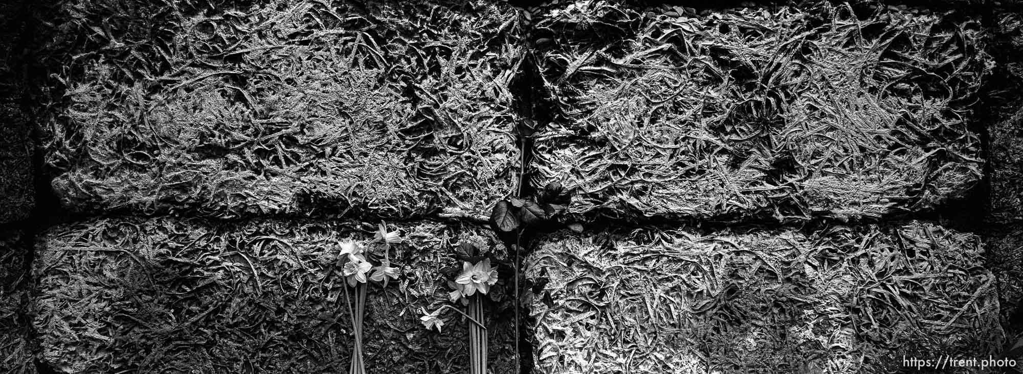 Detail of the Wall of Death at the Auschwitz Concentration Camp.