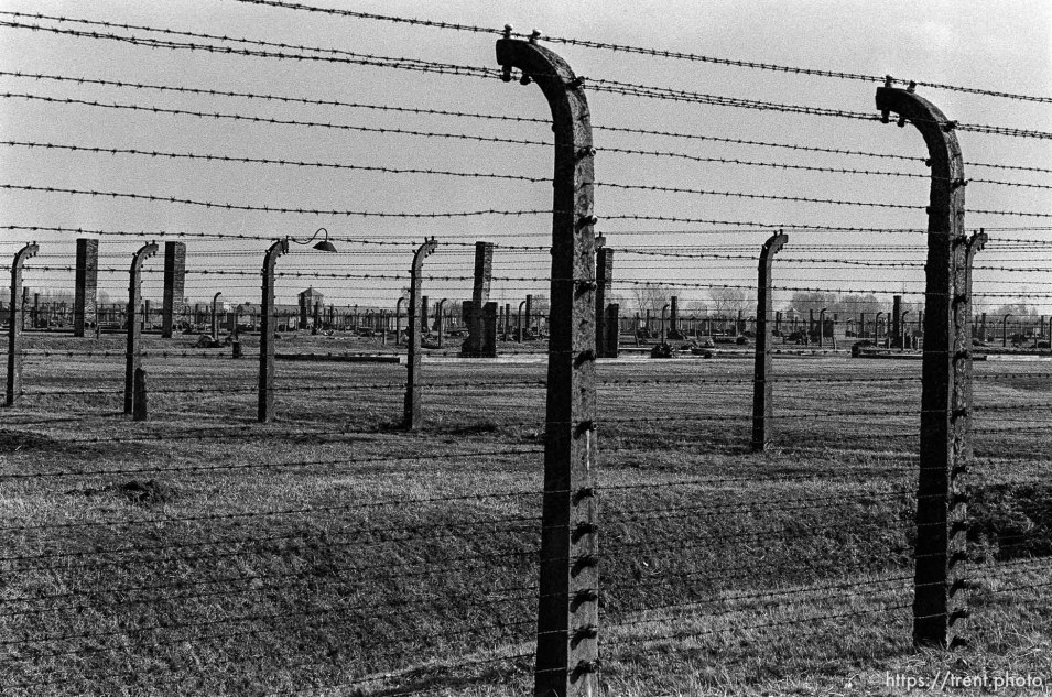 Barbed wire fences at the Birkenau Concentration Camp.
