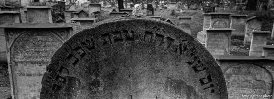 Old Jewish cemetery at Remu'h Synagogue.