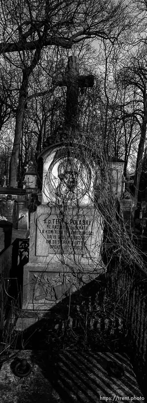 Grave in old cemetery
