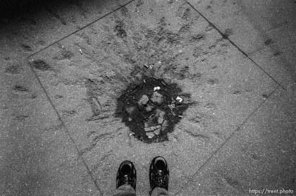 "Trent feet and ""rose of Sarajevo"", a grenade blast."