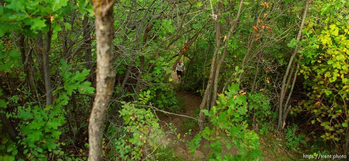 Runner near the Lambs Canyon aid station. Wasatch 100 Endurance Run.