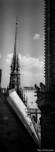 Spire on top of Notre Dame
