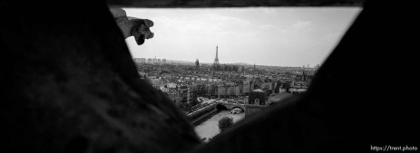 Eiffel Tower and cityscape from the top of Notre Dame