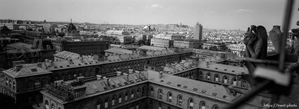 Cityscape from the top of Notre Dame