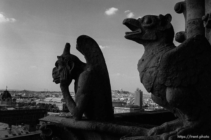 Gorgoyles on top of Notre Dame