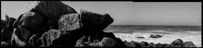 The beach at Monterey