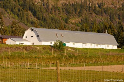barn. Polygamist Winston Blackmore in Bountiful, British Columbia.