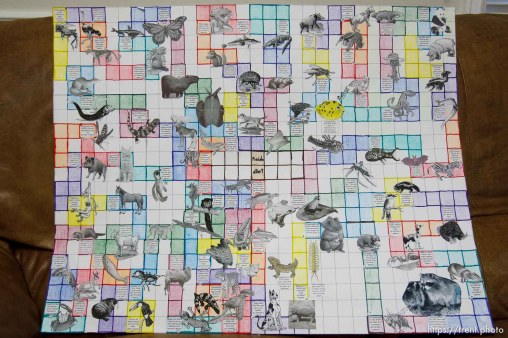 Westcliffe - . Monday, July 28, 2008. handmade animal board game