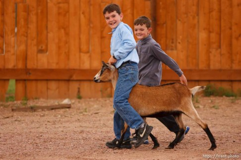 Westcliffe - . Monday, July 28, 2008. boys with goat