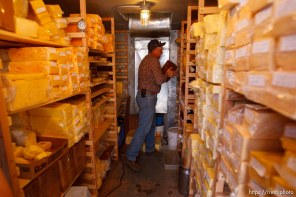 Hildale -, Tuesday August 11, 2009. finney farms. winford barlow in cheese cold storage