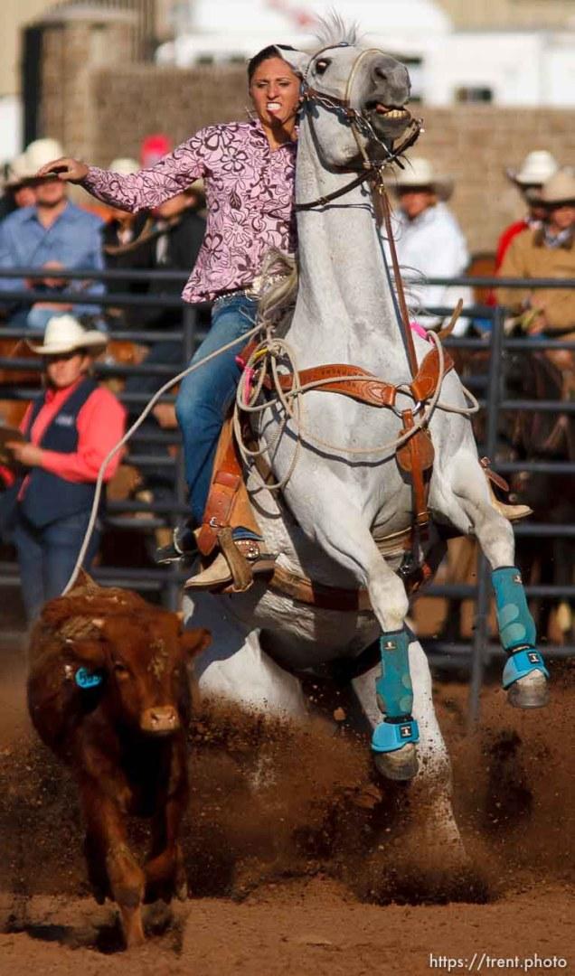 Trent Nelson | The Salt Lake Tribune Shaylee Thacker in the breakaway competition at the Utah High School Rodeo Finals Saturday, June 9, 2012 in Heber City, Utah.