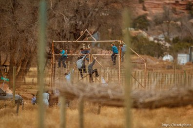 kids climbing gate to the zoo, Friday November 30, 2012.
