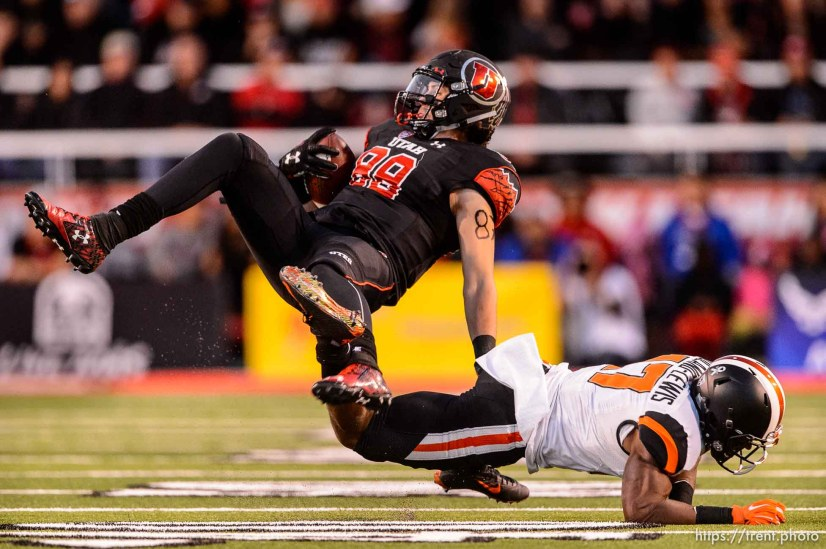 Trent Nelson | The Salt Lake Tribune Utah Utes tight end Harrison Handley (88) is tripped up by Oregon State Beavers safety Cyril Noland-Lewis (17) as the University of Utah hosts Oregon State, NCAA football at Rice-Eccles Stadium in Salt Lake City, Saturday October 31, 2015.