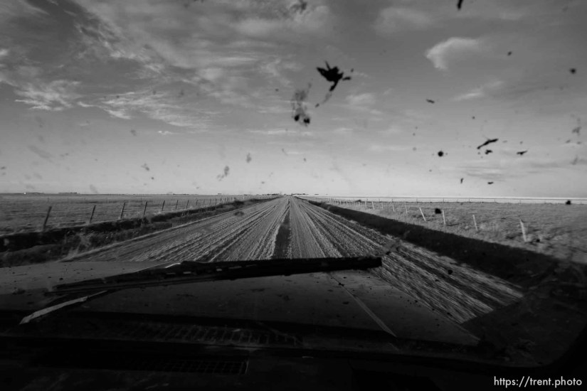 Driving through fields with Ross Robinson and Marshall Wilde.