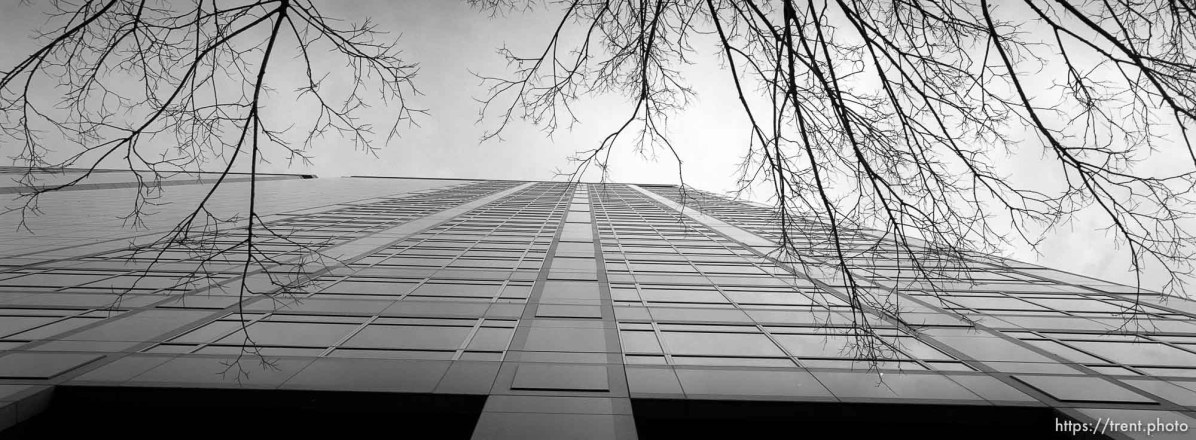 American Stores building and trees